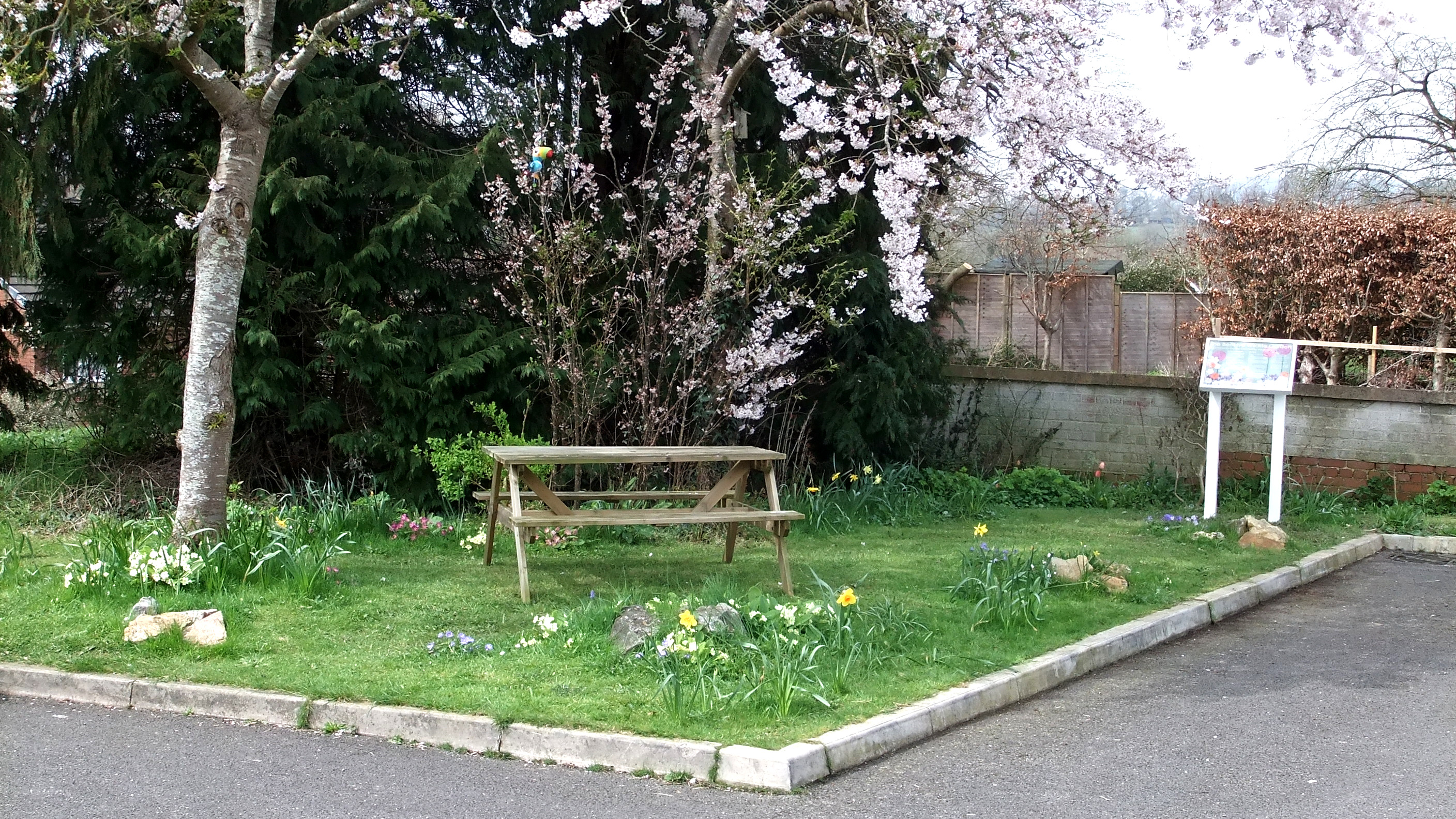 Wildlife garden at the Beehive in Honiton, including wildflowers, picnic bench and display board