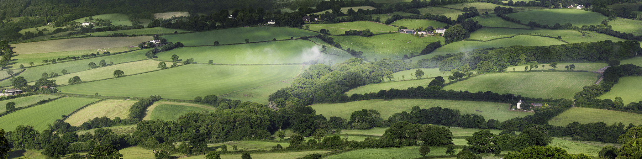 View from Dumpdon Hill. Photo: Liam Marsh