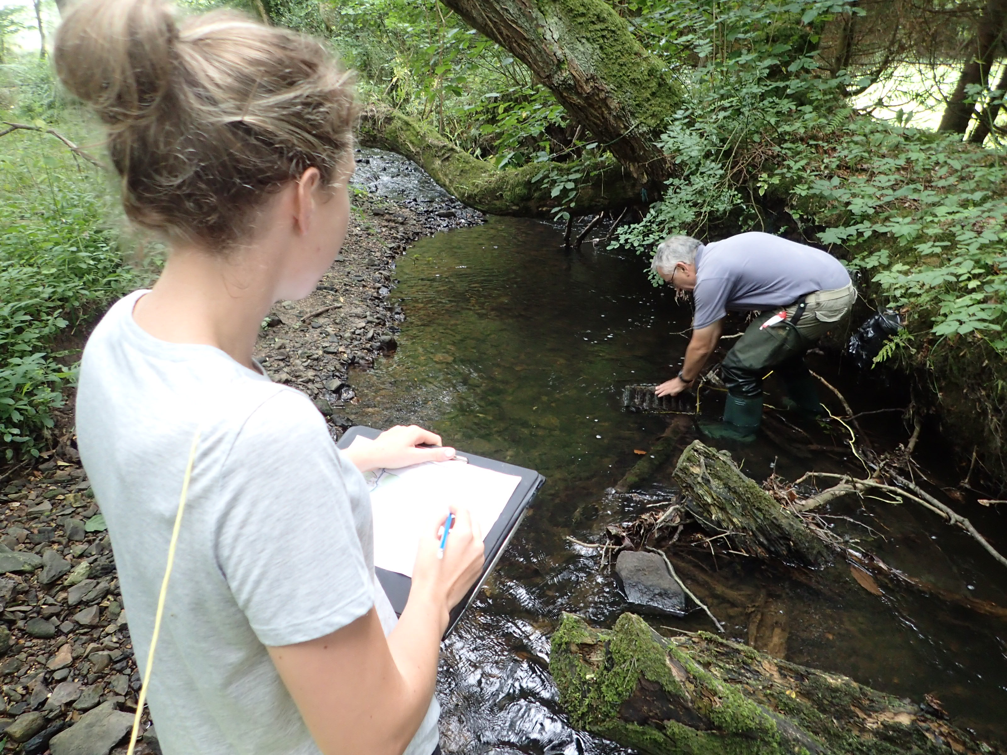 Crayfish survey using refuge trap