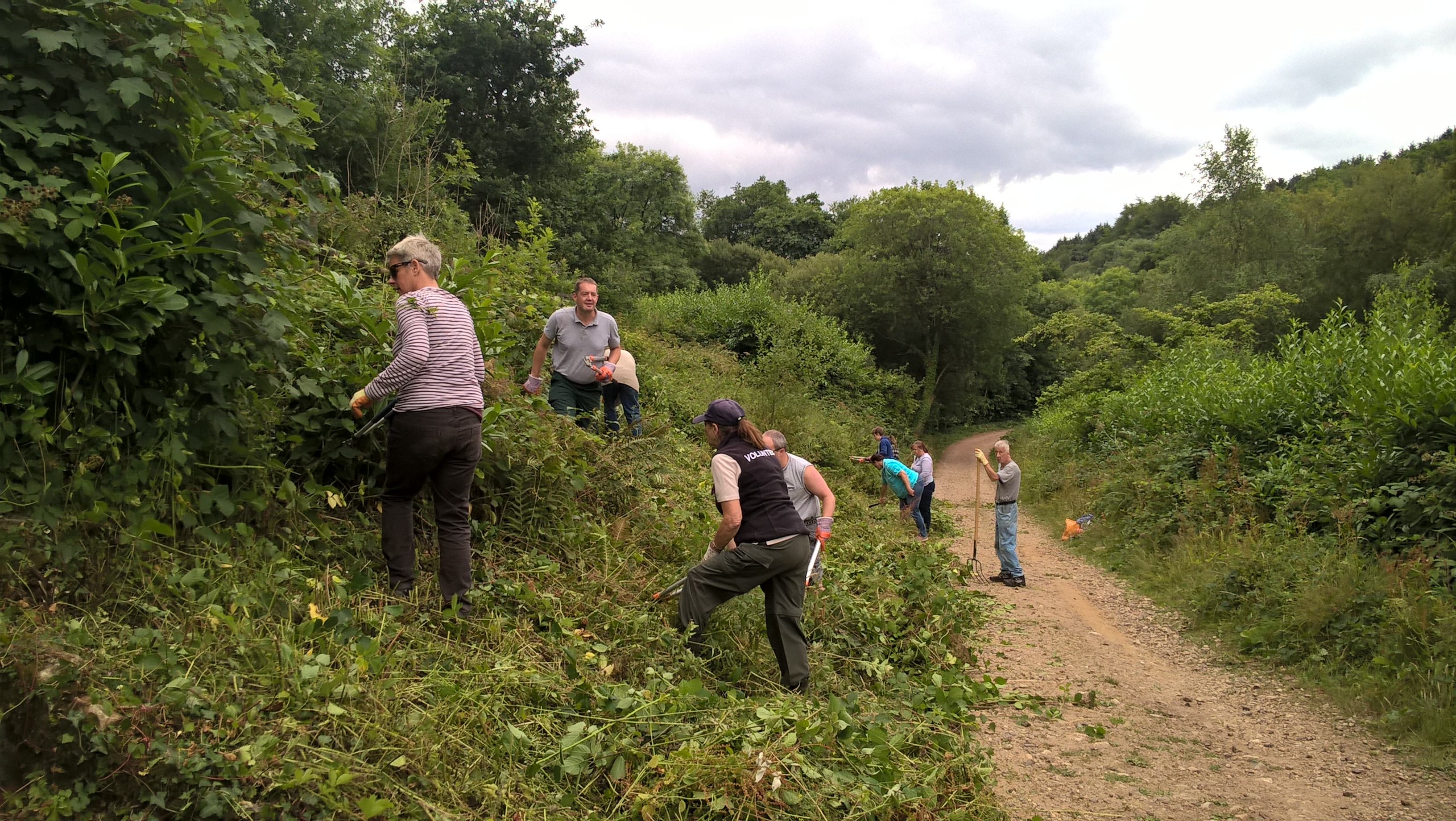 Volunteers at Otterhead Lakes