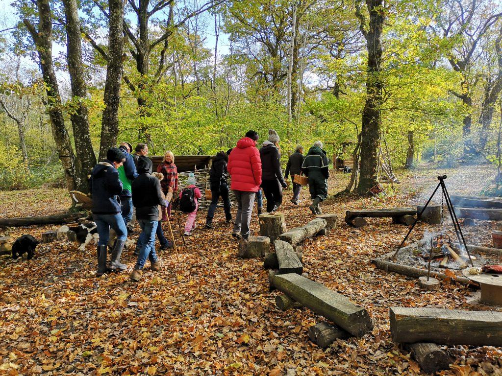 Mushroom Foray Young Wood 2018