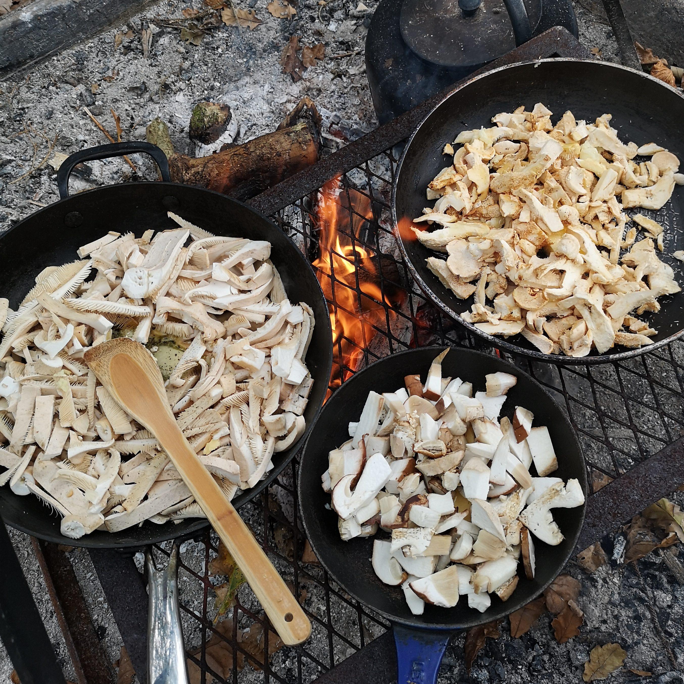 Mushroom apetisers being cooked