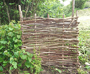 Traditional hazel hurdle.
