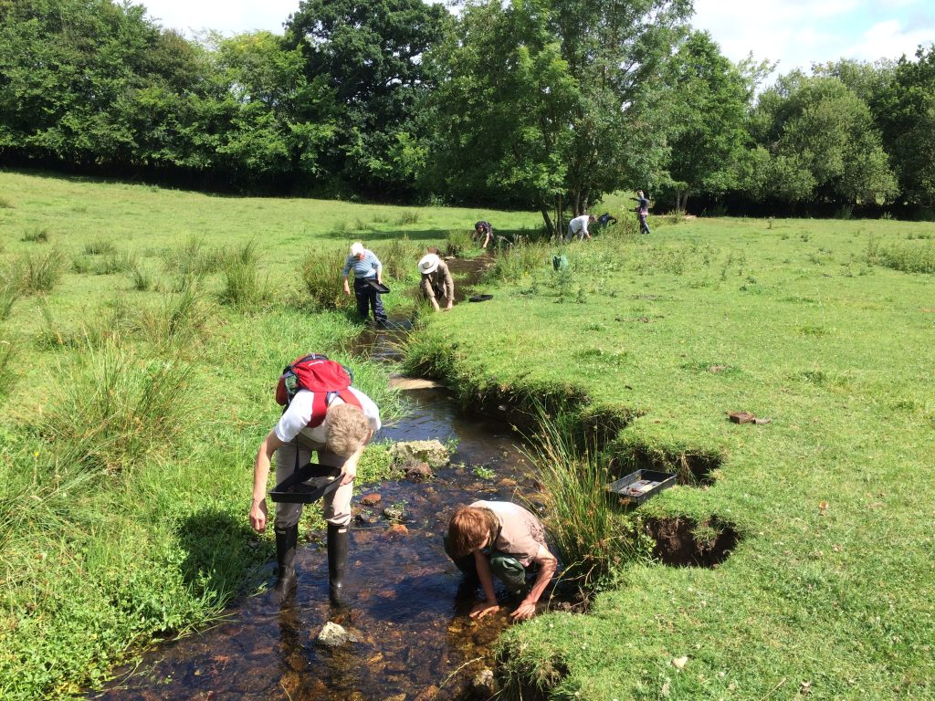 Several volunteers walking along the bed of a stream picking out fragments and placing them in trays.