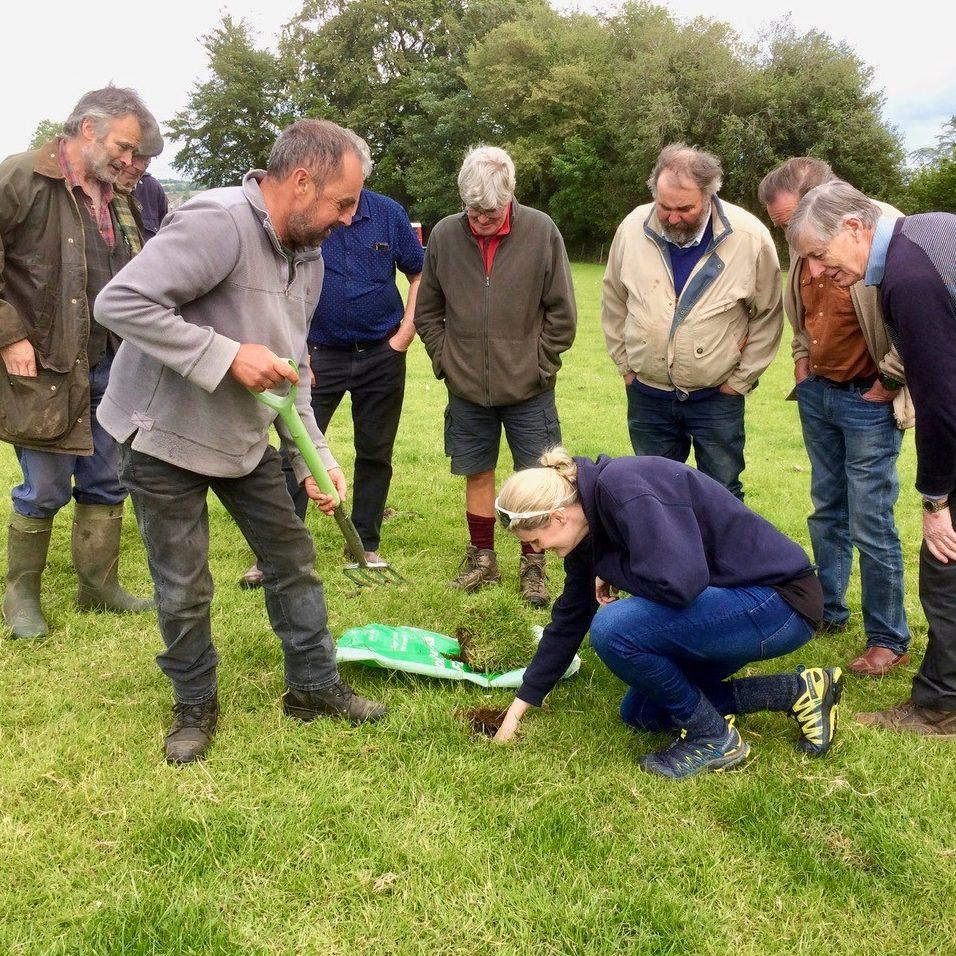 Farmers doing soil tests for earthworm activity. Photo: Gavin Saunders