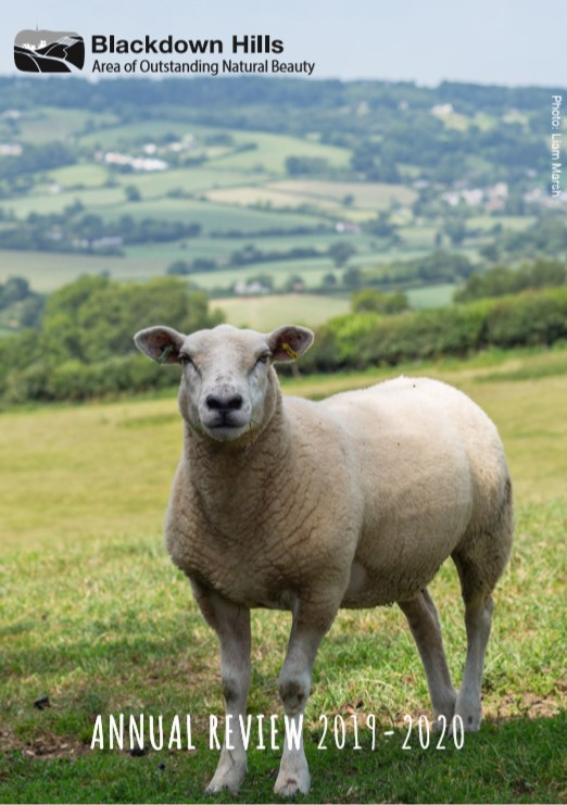 Blackdown Hills Area of Outstanding Natural Beauty Annual Review 2019-2020 with a picture of a sheep in front of a view of a patchwork of fields and hedges
