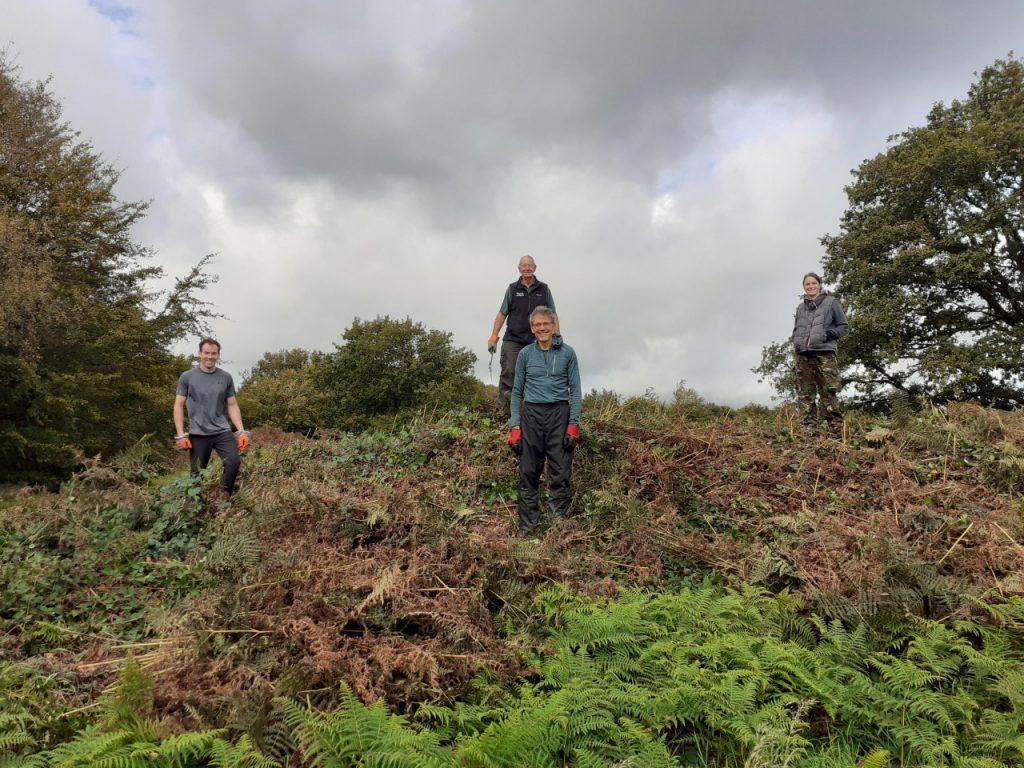 Volunteers at Hembury Hillfort